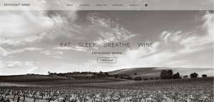 enthusiast wines website